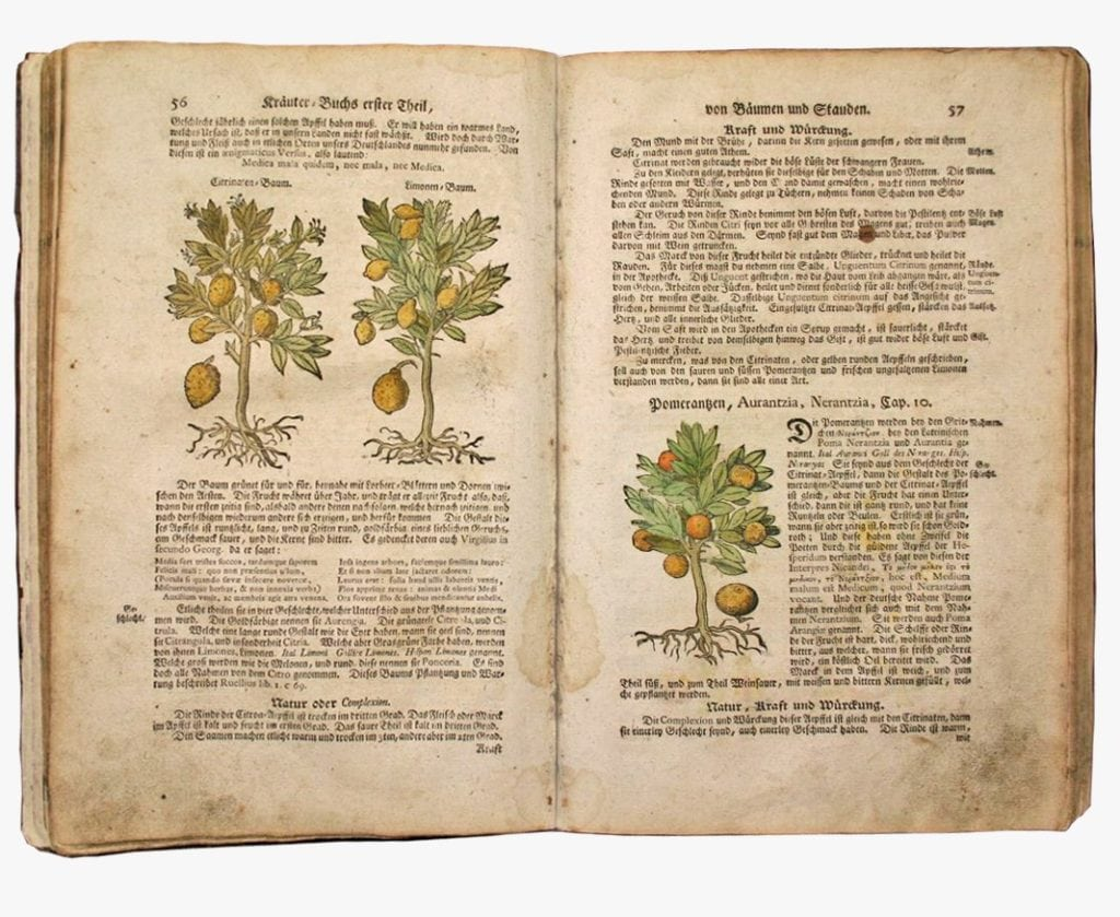 Naturvital Florian ancient remedies