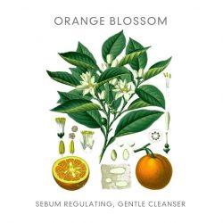 Abloom puriying cleanser orange blossom