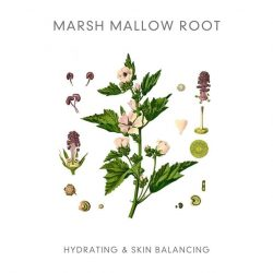 Abloom blossom mask marshmallow root