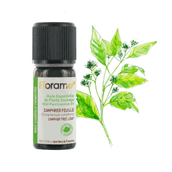 Florame Camphor Tree leaf WILD 10ml
