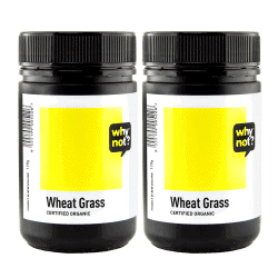 TWIN DEAL Why Not Wheat Grass Powder 100g