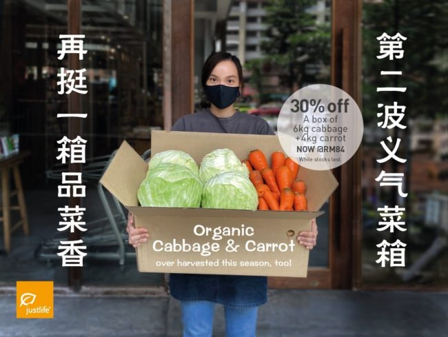 Organic Cabbage & Carrot Box, 10kg